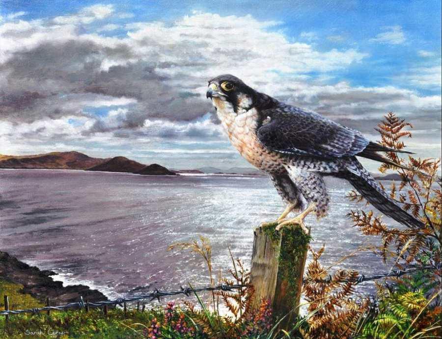 painting by artist Sarah Corner