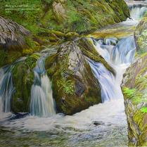 Reany Creek Falls ‐ Pencil ‐ Paper ‐ 15 x 25